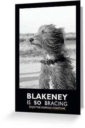 Blakeney is SO bracing by marc melander