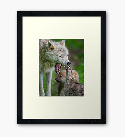 Listen to Mama! Framed Print