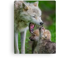 Listen to Mama! Canvas Print