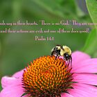 Psalm 14:1 by DreamCatcher/ Kyrah Barbette L Hale