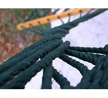 Twisted Hammock Photographic Print