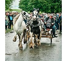Trotting in Tandem Photographic Print