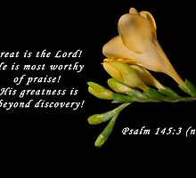 Psalm 145:3 by Deborah McLain