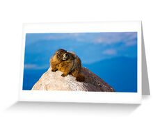 Marmots In Need of Dentistry Greeting Card