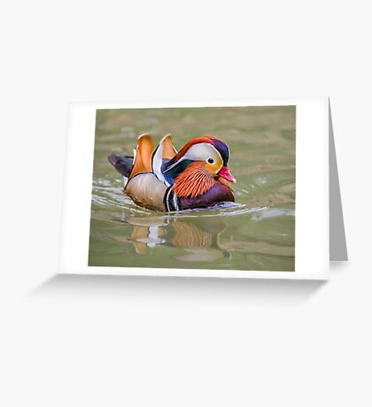 Mandarin Express Greeting Card