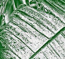 Big Leaf in Green by noriesworld