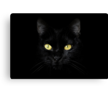 The Cat - Black on Black Canvas Print