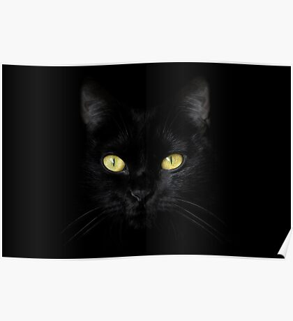 The Cat - Black on Black Poster