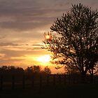 Sunrise at Idlewild Park by phrozenfotos