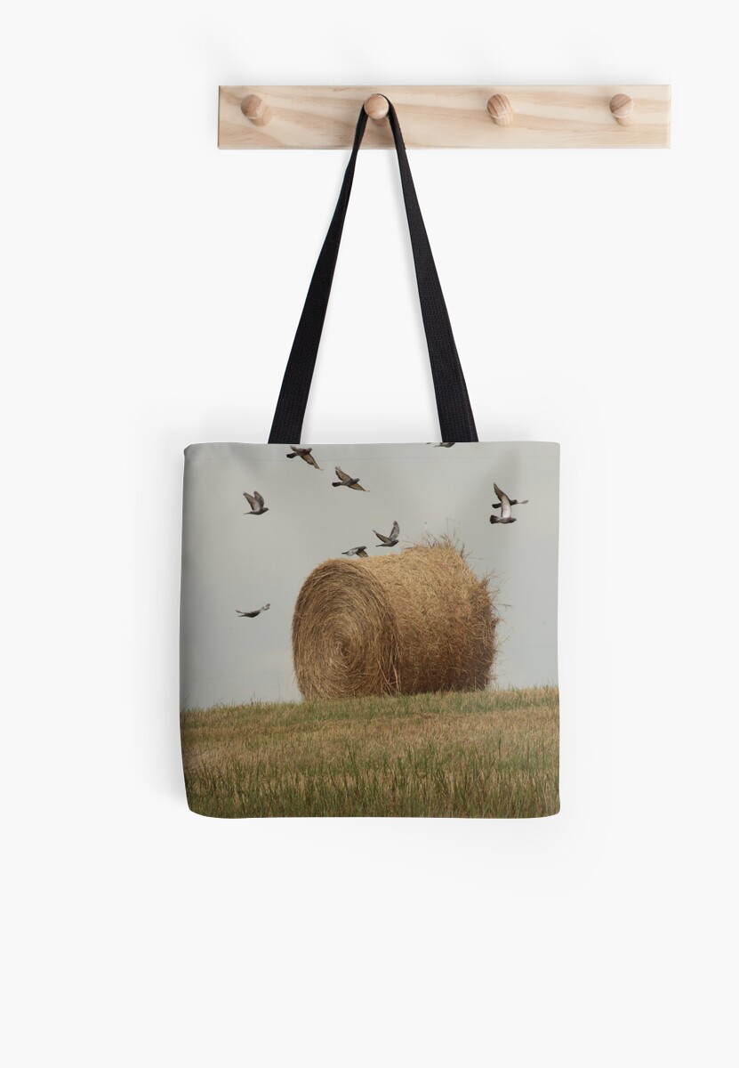 Hairy Hay Bale and Birds by Thomas Murphy