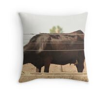 Black Cow and Tires Throw Pillow