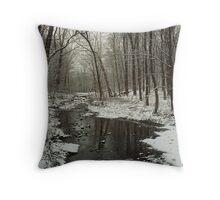 Winter Scene on Bullittsville Rd.   Throw Pillow