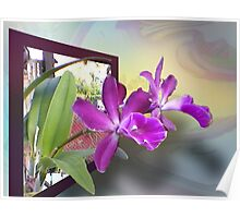 2 Orchids 4U Poster