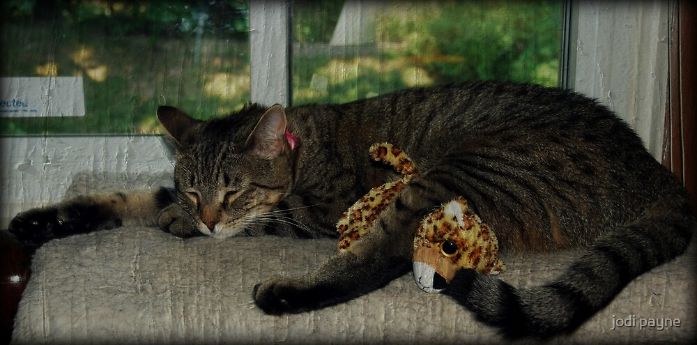 Nap Time With Baby by jodi payne