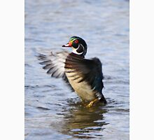 The little wood duck that could Unisex T-Shirt