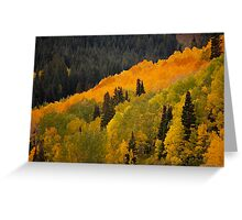 Fall Surprise  Greeting Card