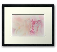 Marshmallow Dreams.... Framed Print