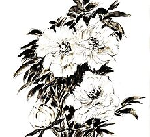 Peonies in ink by Maree Clarkson