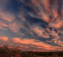 Dusk in the Simpson Desert by Tim Coleman