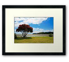 Signs of Summer Framed Print