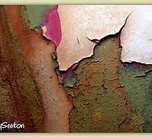 PEELING PAINT 7 of 10 by Betsy  Seeton