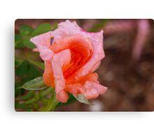 Peach refresher Canvas Print