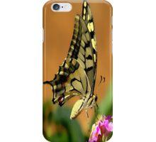 butterart case iPhone Case/Skin