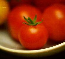 Garden Bounty by Lynn Starner
