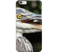 Fish on the fly iPhone Case/Skin