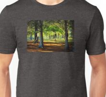 Lovely Grouping of Trees in Mississippi Unisex T-Shirt