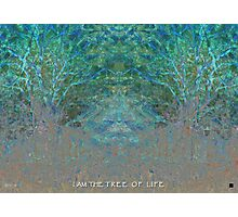 i am The Tree of Life Photographic Print