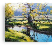 Fish River Tarana Canvas Print