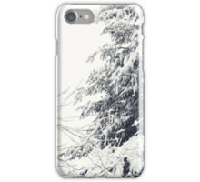 January Snowstorm iPhone Case/Skin