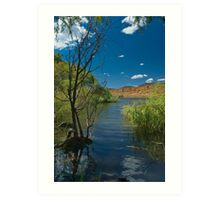 Banks of the 'Bidgee Art Print