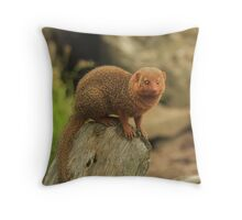 """Dwarf Mongoose "" Throw Pillow"