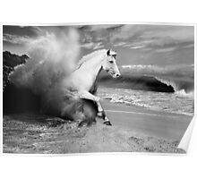 Horse and Waves Poster