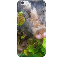 Pig_leaves iPhone Case/Skin
