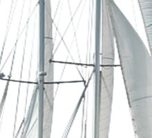 Turkish Gulet Under Sail Isolated On White Sticker