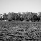 The Black and White Lake by Kendra Kantor