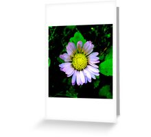 Daisy in the Dark Greeting Card