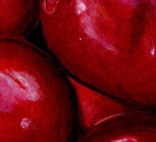 Cherries in Colour Pencil Sticker