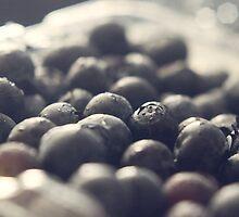 Blueberries by KendraJKantor