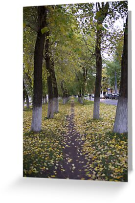 Autumn trees by MrTaskaev