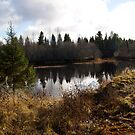 Small river, but very beautiful view by MrTaskaev