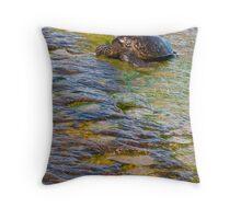 Turtle Tanning Throw Pillow