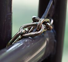 Chained to the Outside World by Sherry Hallemeier