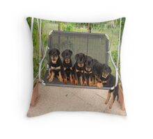 Six Rottweiler Puppies Lined Up On A Swing Throw Pillow