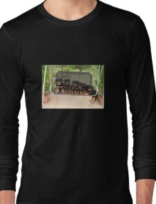 Six Rottweiler Puppies Lined Up On A Swing Long Sleeve T-Shirt