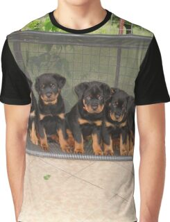 Six Rottweiler Puppies Lined Up On A Swing Graphic T-Shirt