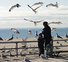 Food for seagulls by Eugenia Gorac
